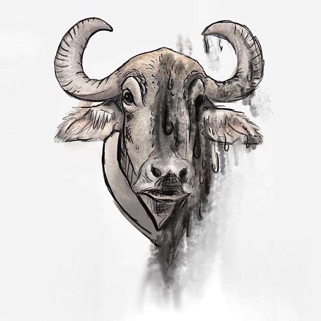 Concept water buffalo for Hill, a not your average farm to table restaurant. . . . #illustration #graphicdesign #restaurantdesign #art #waterbuffalo