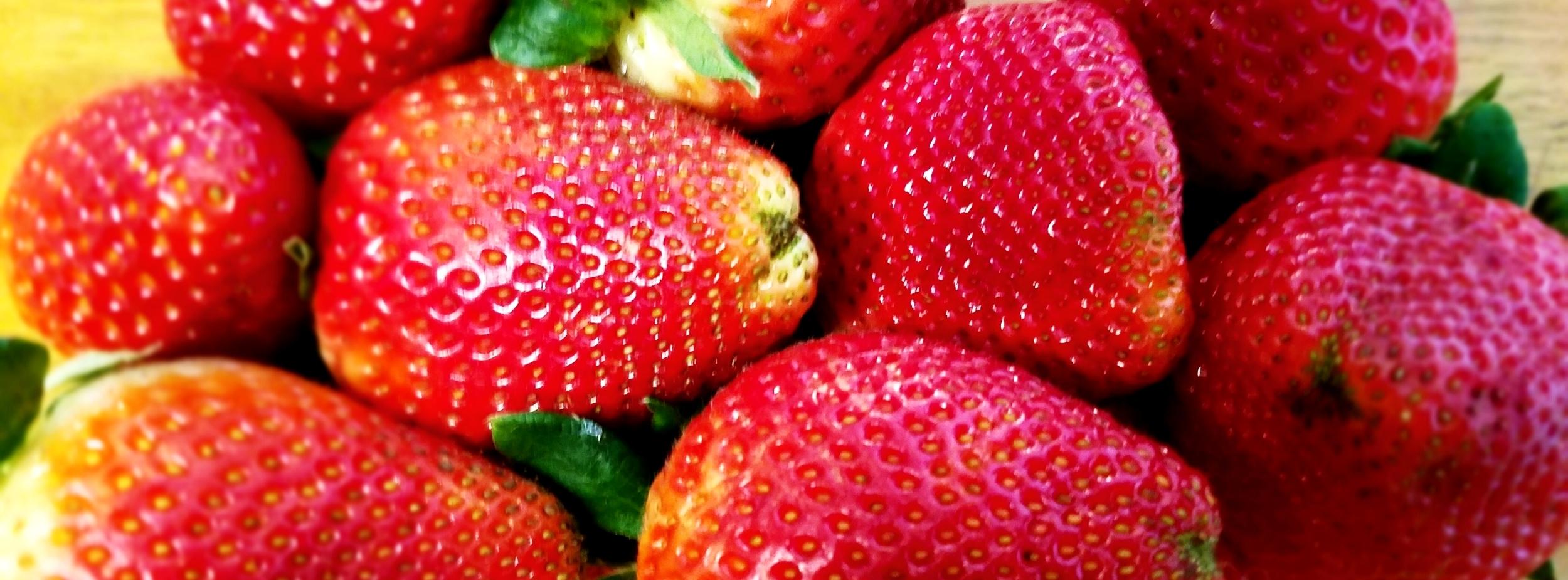 Strawberry-Avocado Dagwood