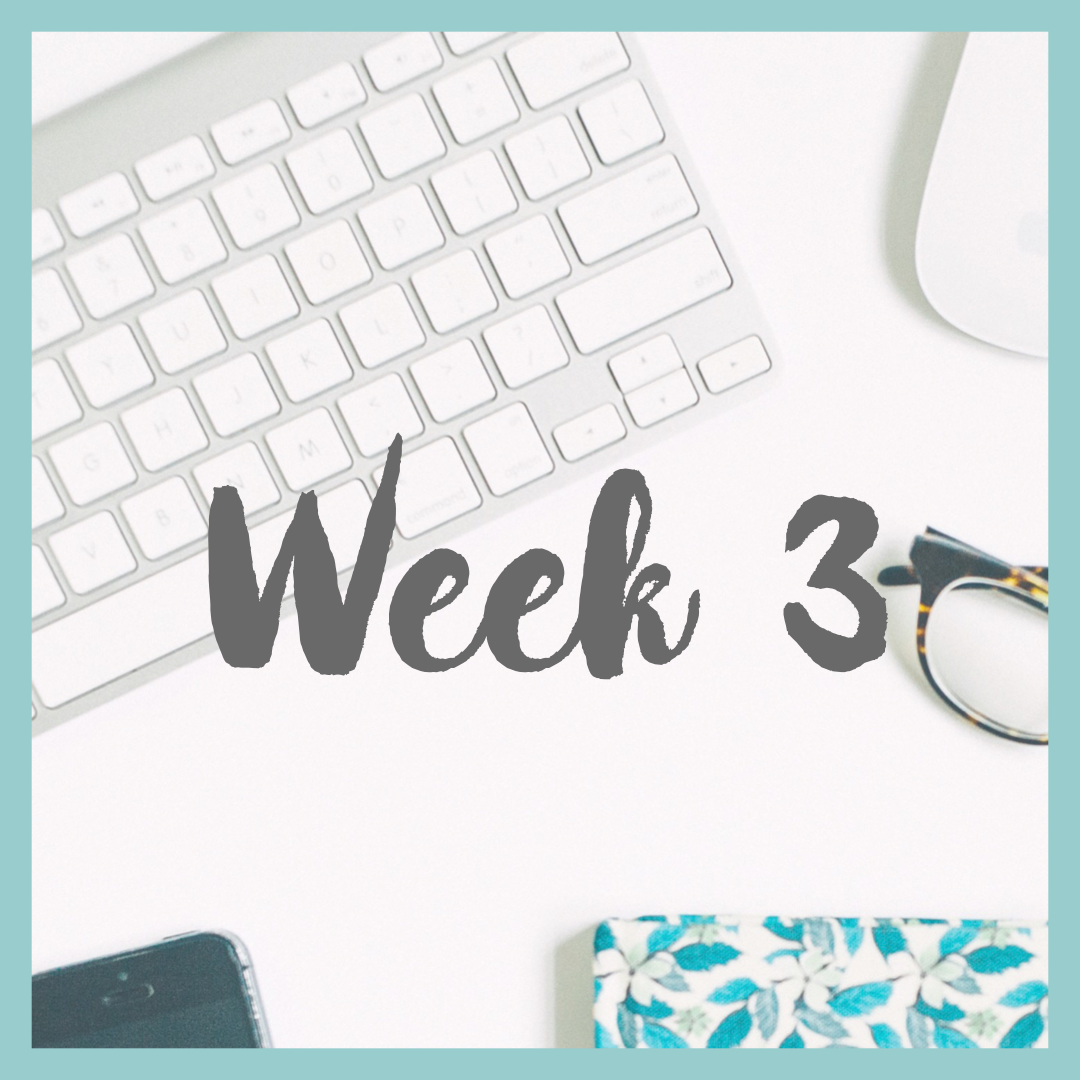week3.PNG