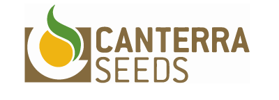 canterra-seeds-sunset-ventures-seed.png