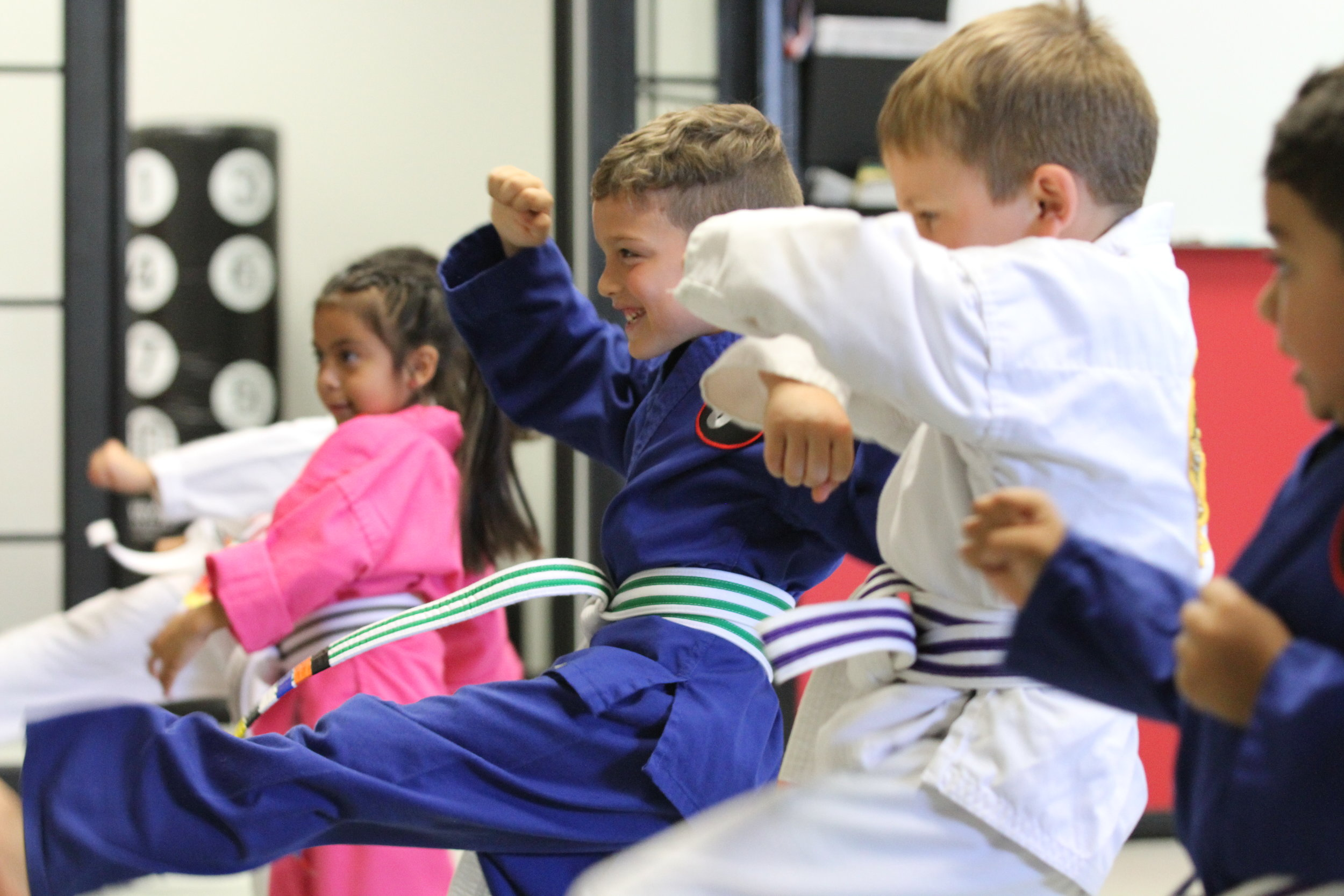 Self defense karate and jiu-jitsu lessons near me