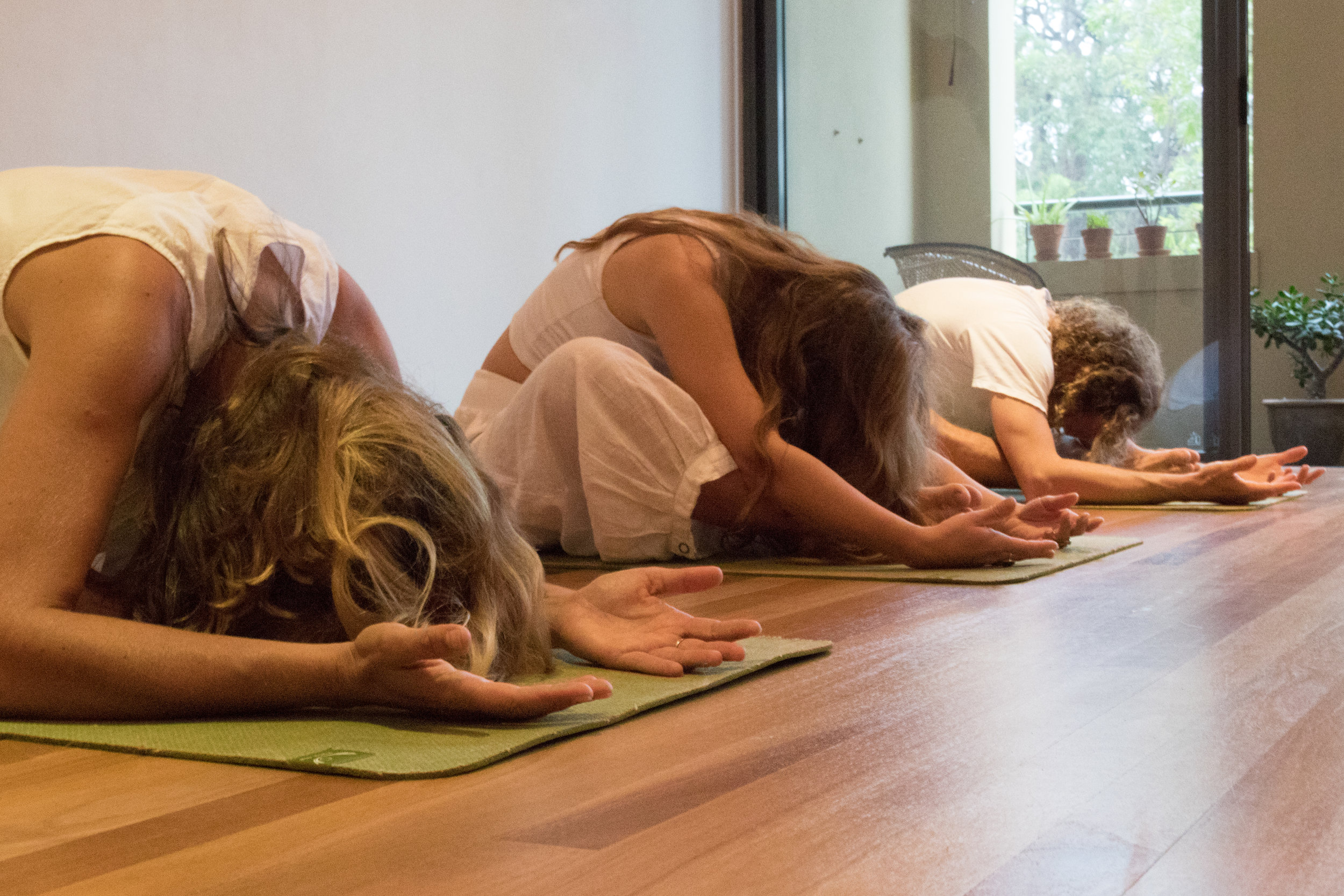 yin_yoga_sydney_northern_beaches.jpg