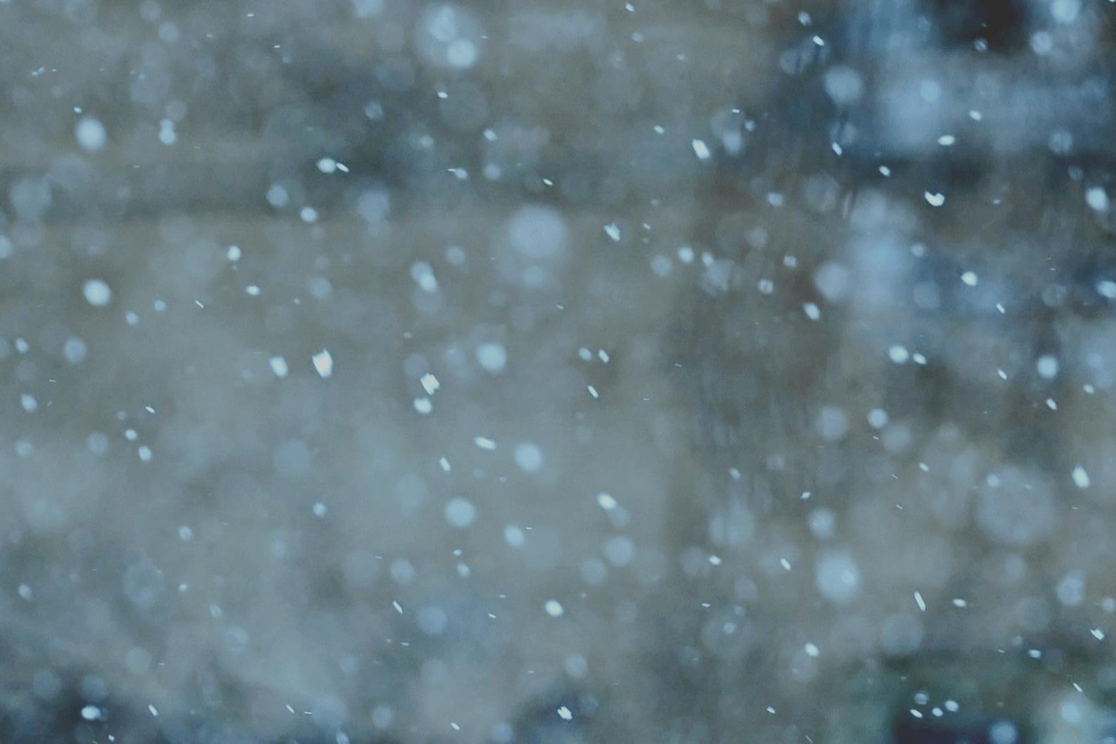 FABIO'S WINTER INTENSIVE - Five consecutive mornings of warming Yoga this WinterMon 15th - Fri 19th July6.30-8.00am$125