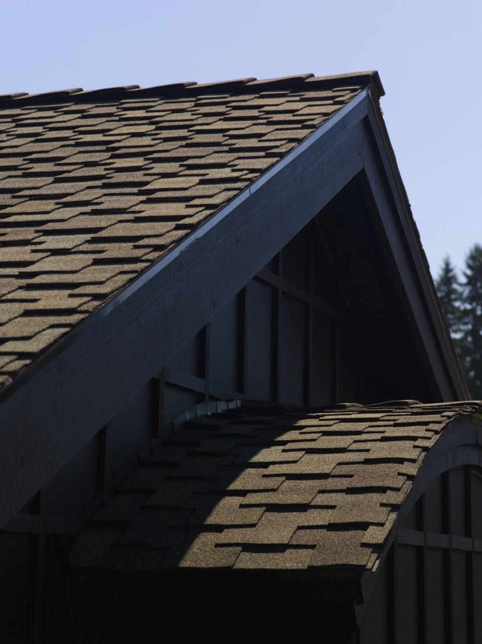 roof5.jpeg