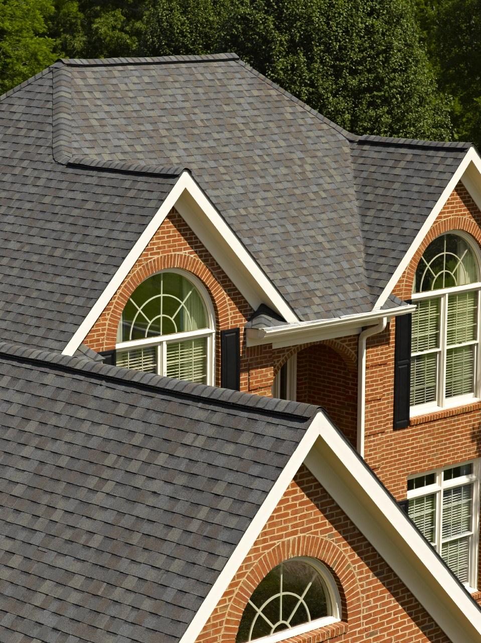 roof6.jpeg