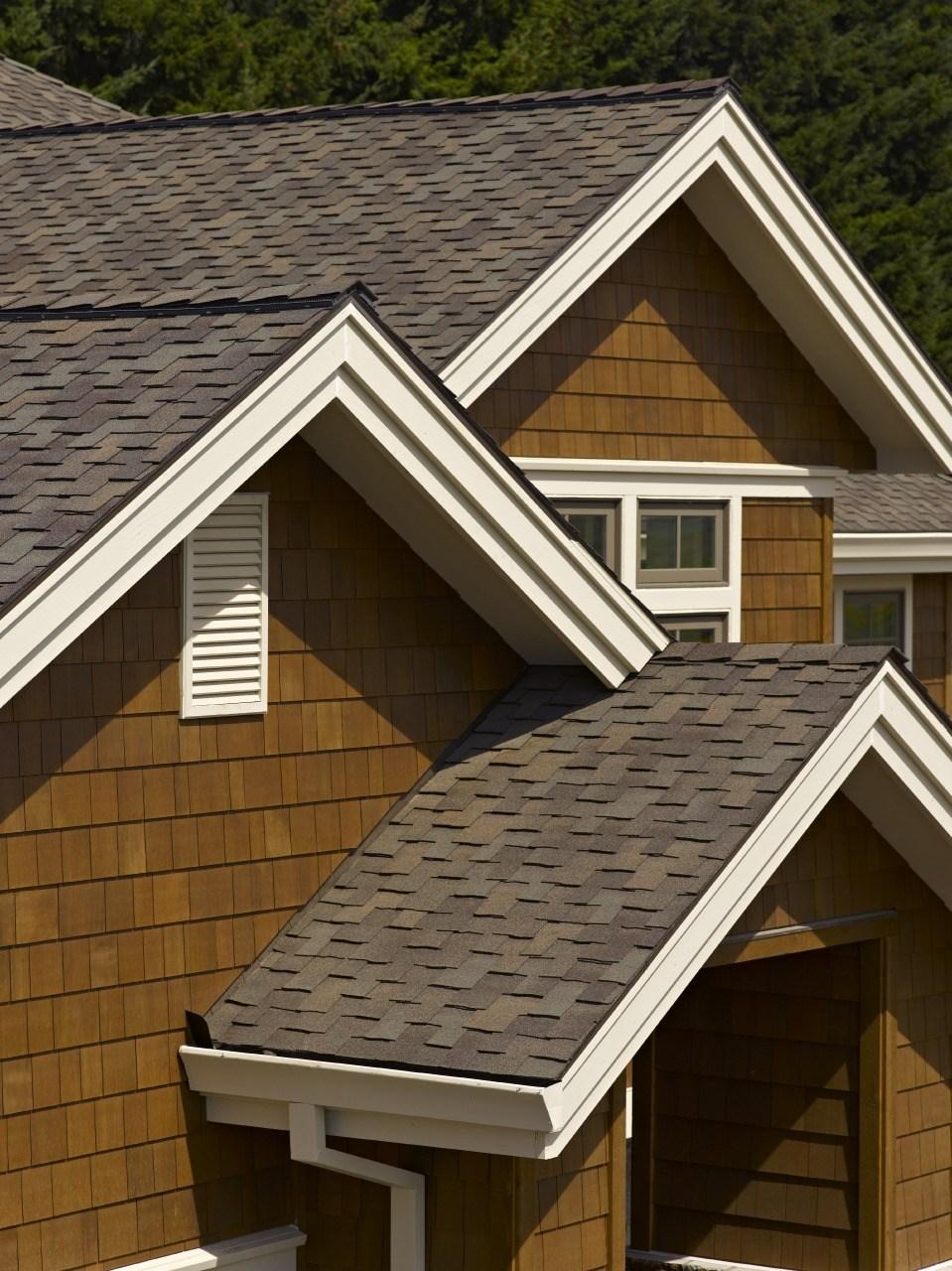 roof8.jpeg