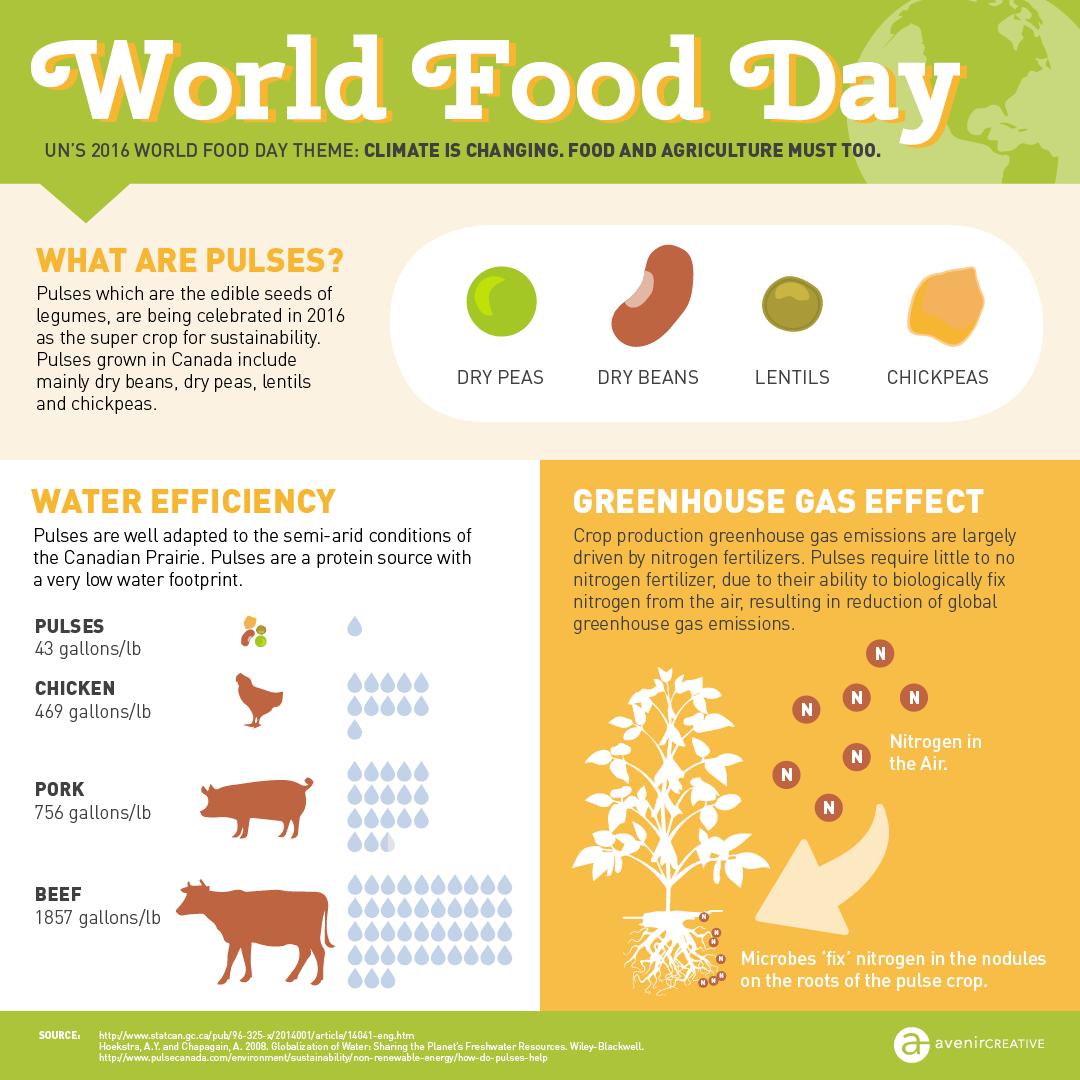 Avenircreative-World-Food-Day .jpg