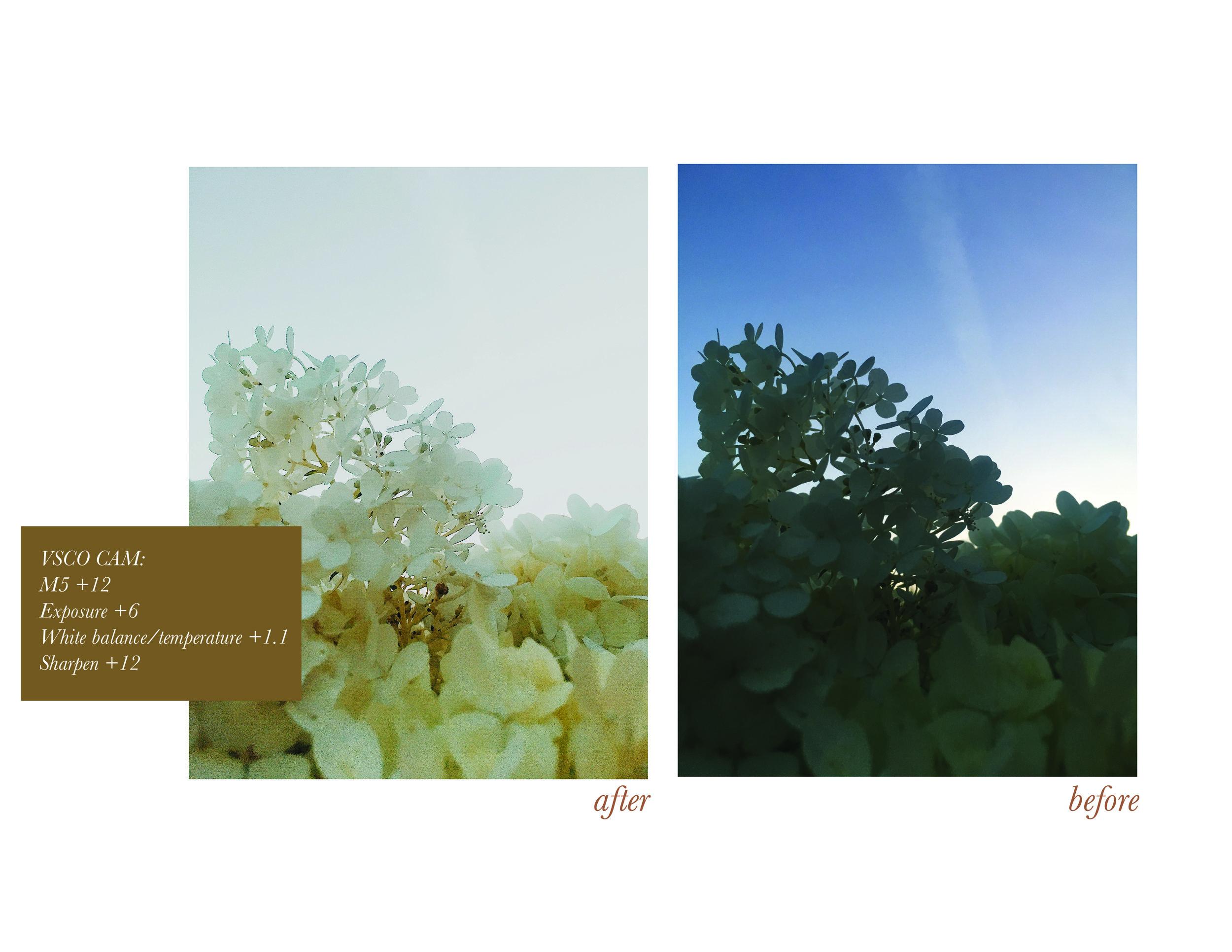 Untitled-4-03.jpg