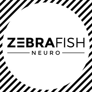 - Zebrafish Neuro is led by Stephanie Behrendt and Theo St. Francis. Their mission is to make mindful movement standard in spinal cord injury recovery.