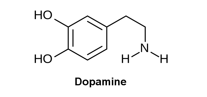 NEUROREHAB Blog - dopamine photo1.jpg