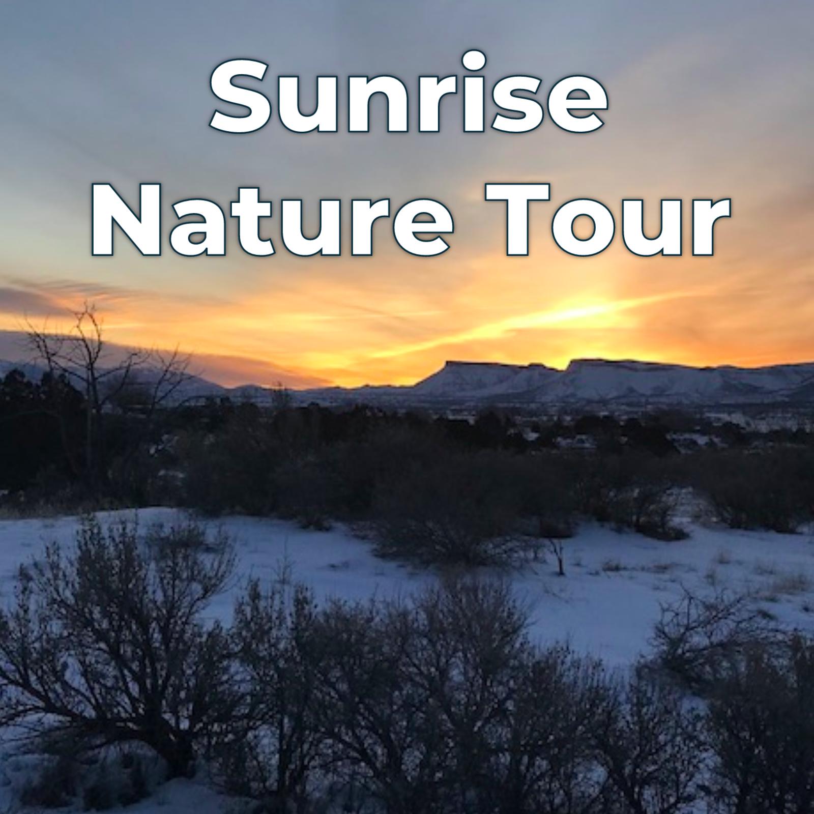 sunrisetour.png