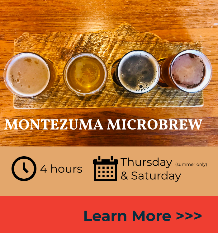 Tour & taste FOUR breweries & ONE cider company. Meet the brewers and learn about the brewing practices & history of Southwest Colorado.  Tastings & snacks are included.