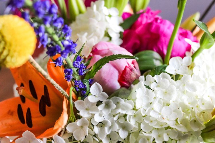 Image result for roses mood board