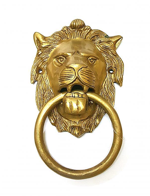 lion door.jpg