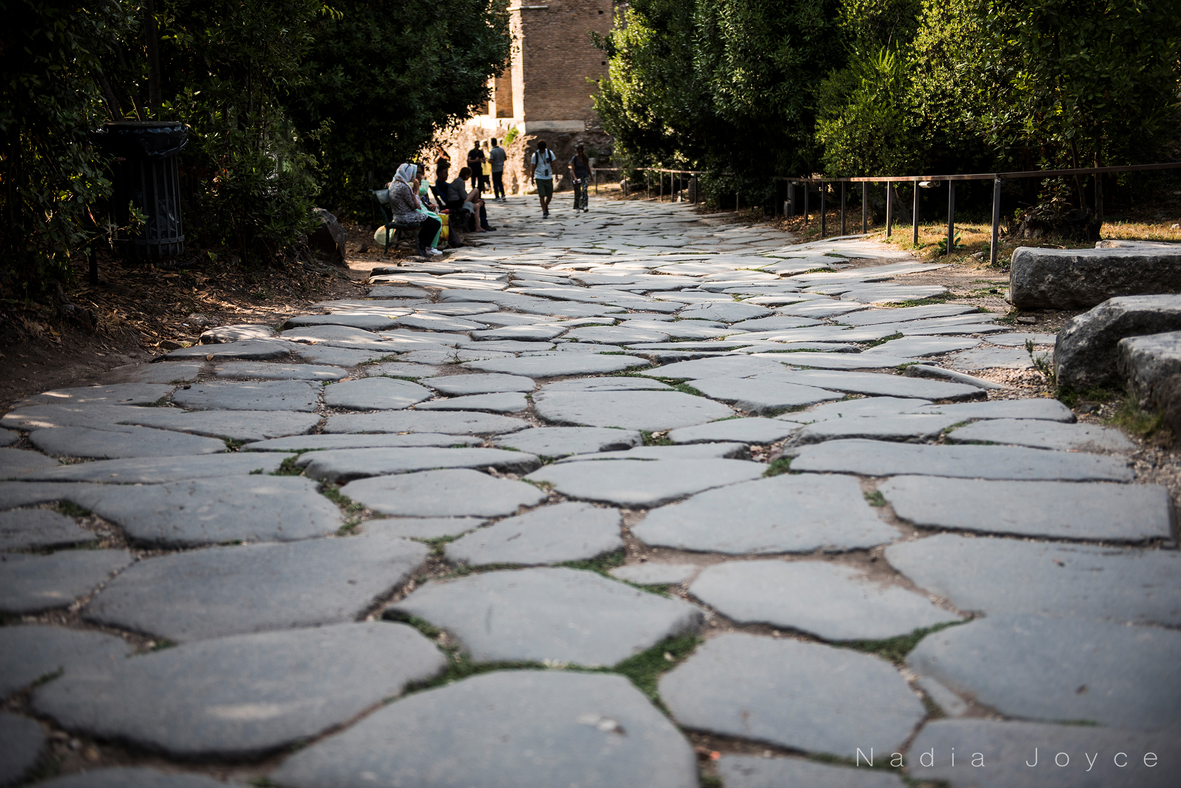These are the original stone steps leading into the Roman Forum. The cracks used to be tightly knit, but have slowly become worn and spread due to years and years of wear.