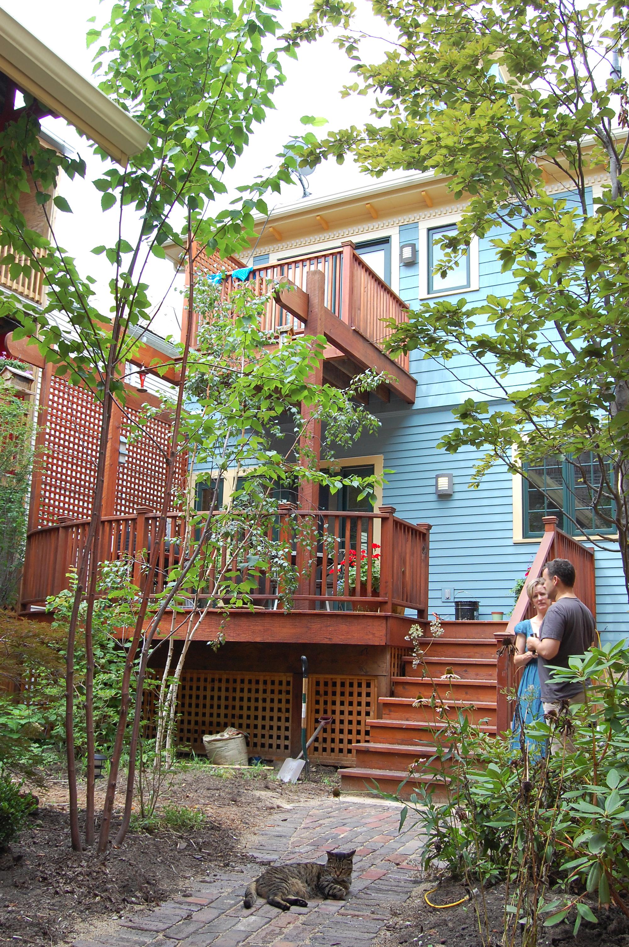 custom single-family residential home renovation, 1920s four-bedoom house, back porch, deck, cat, garden