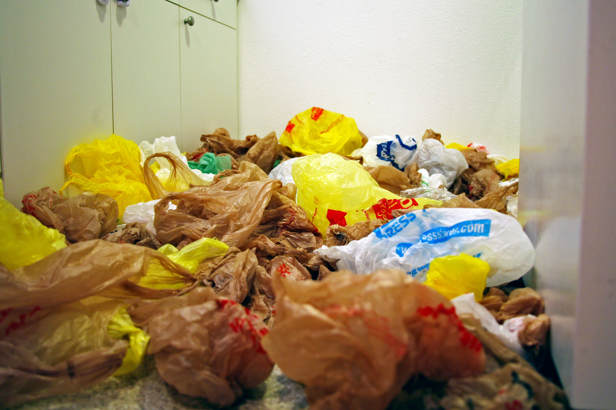 How many plastic bags did your family acquire last year?