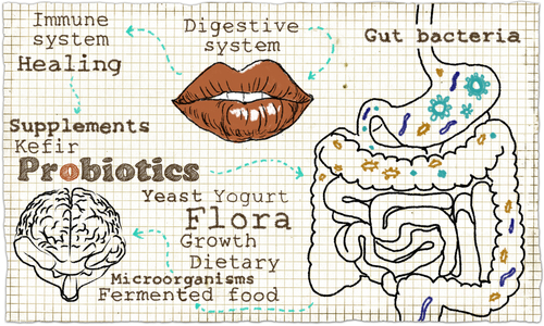 Probiotika-psyhologia-entero.jpg