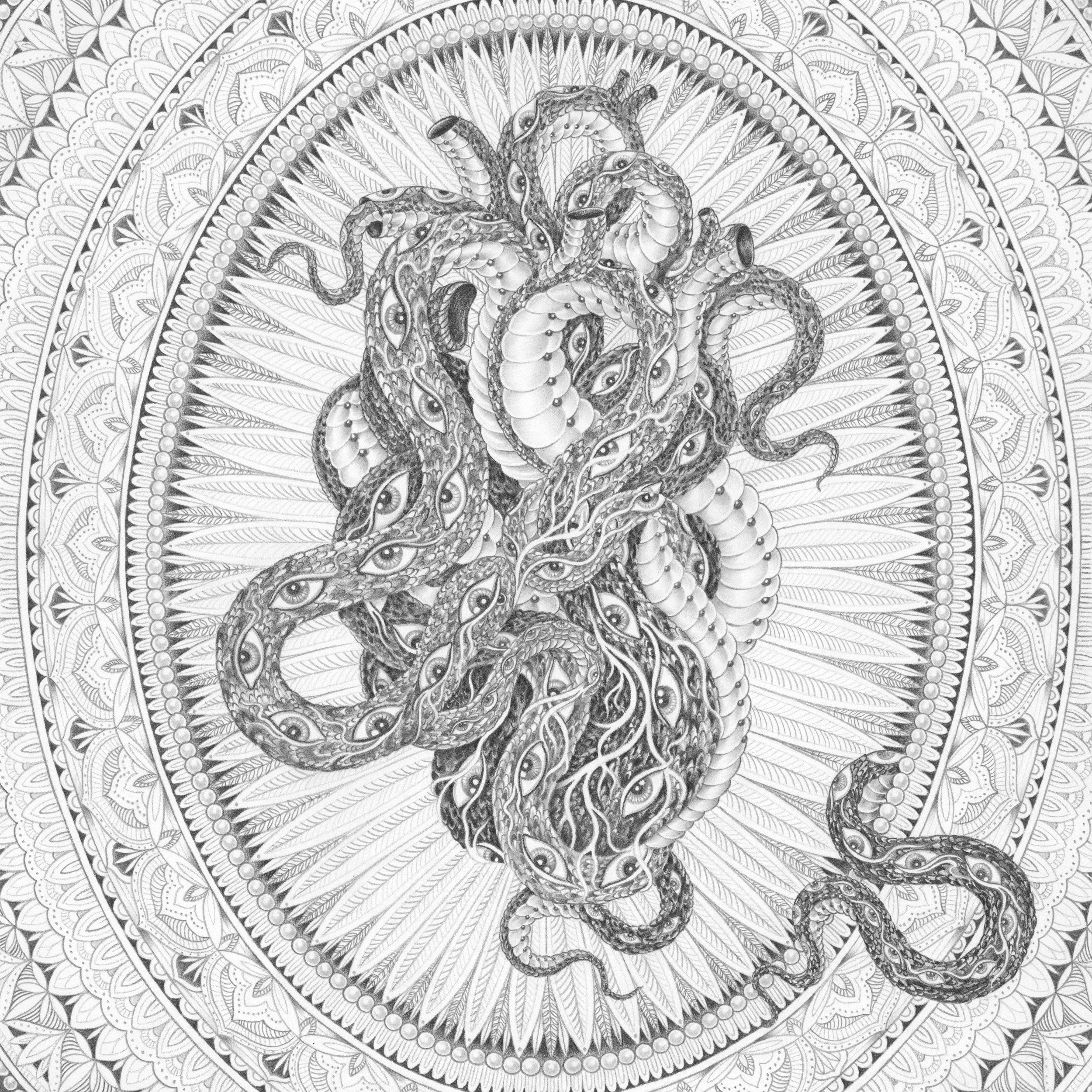 SAIRA HUNJAN - EXPLORE THE COLLECTION