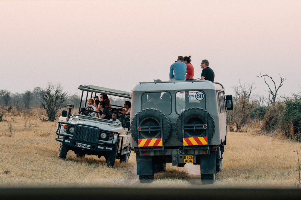 Safari time in Chobe national park