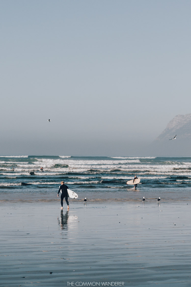 surfers on the beach in Cape Town