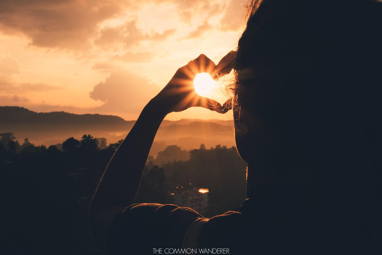 The Common Wanderer_.jpg