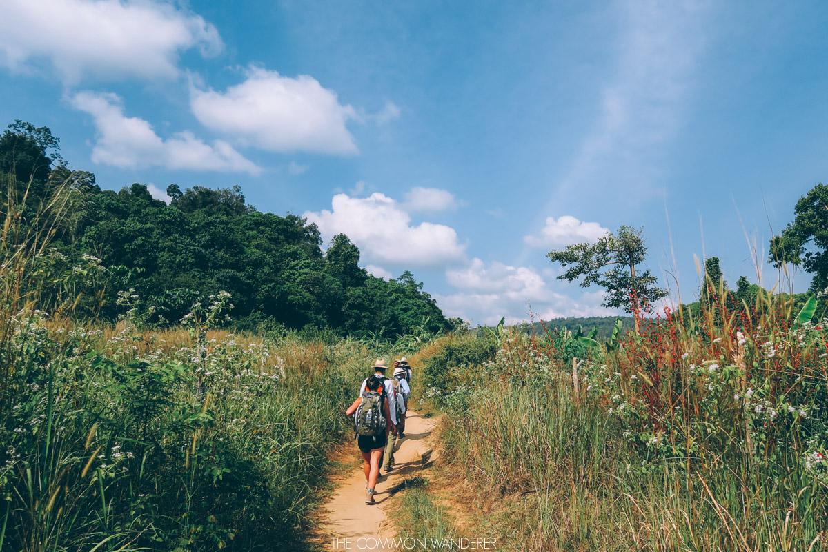 Favourite Travel Experiences - Chi Phat, Cambodia