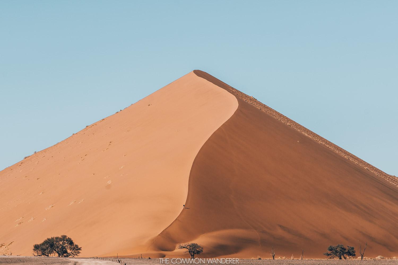 an-overlander-driving-through-the-namibia-desert