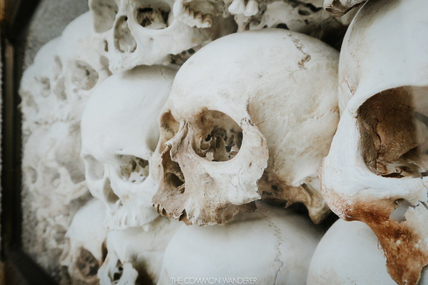 Skulls of Cambodian citizens lines up at Choeung Ek Genocidal Centre, Cambodia