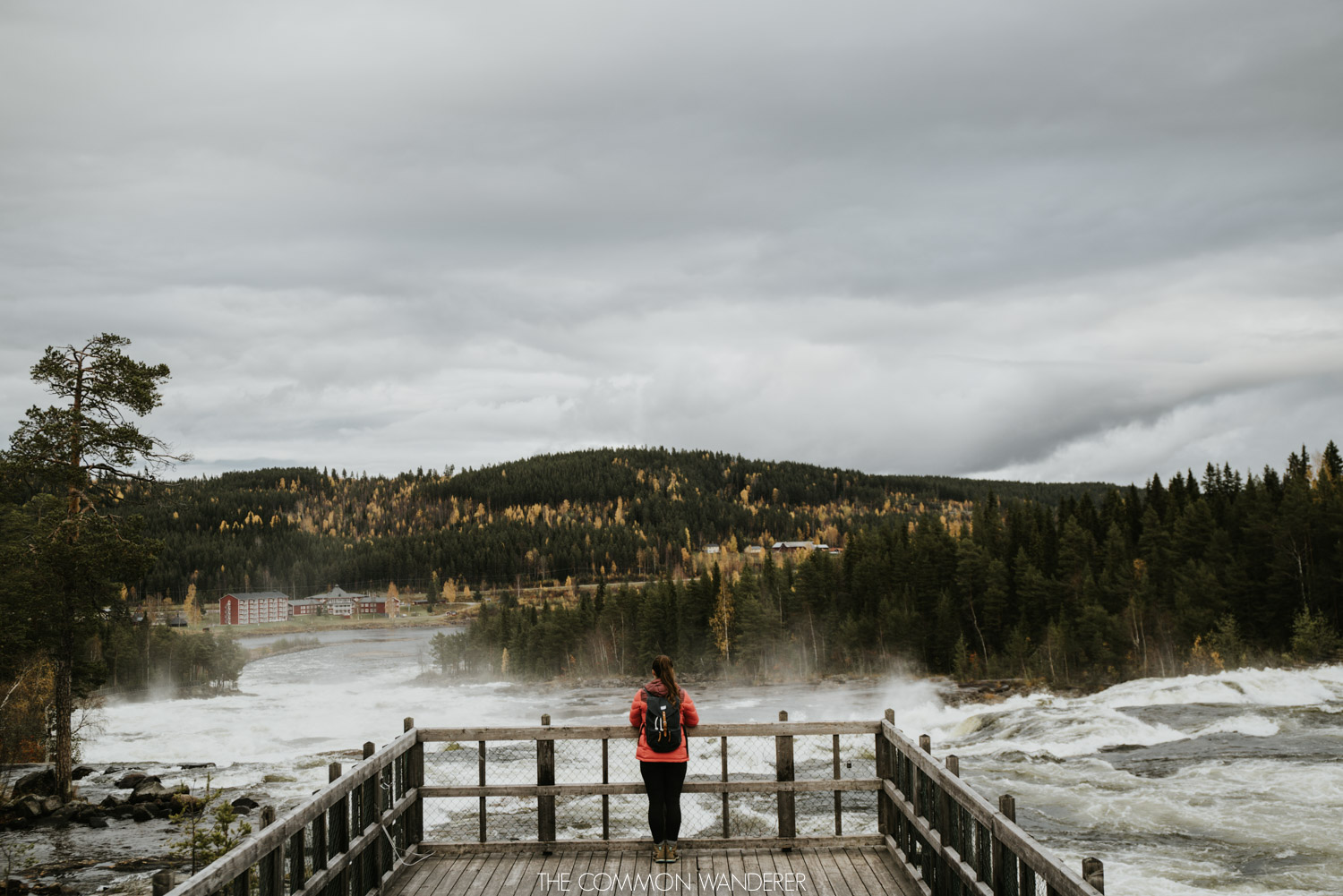 Lapland Pictures: Looking out over Storforsen Waterfall, sweden