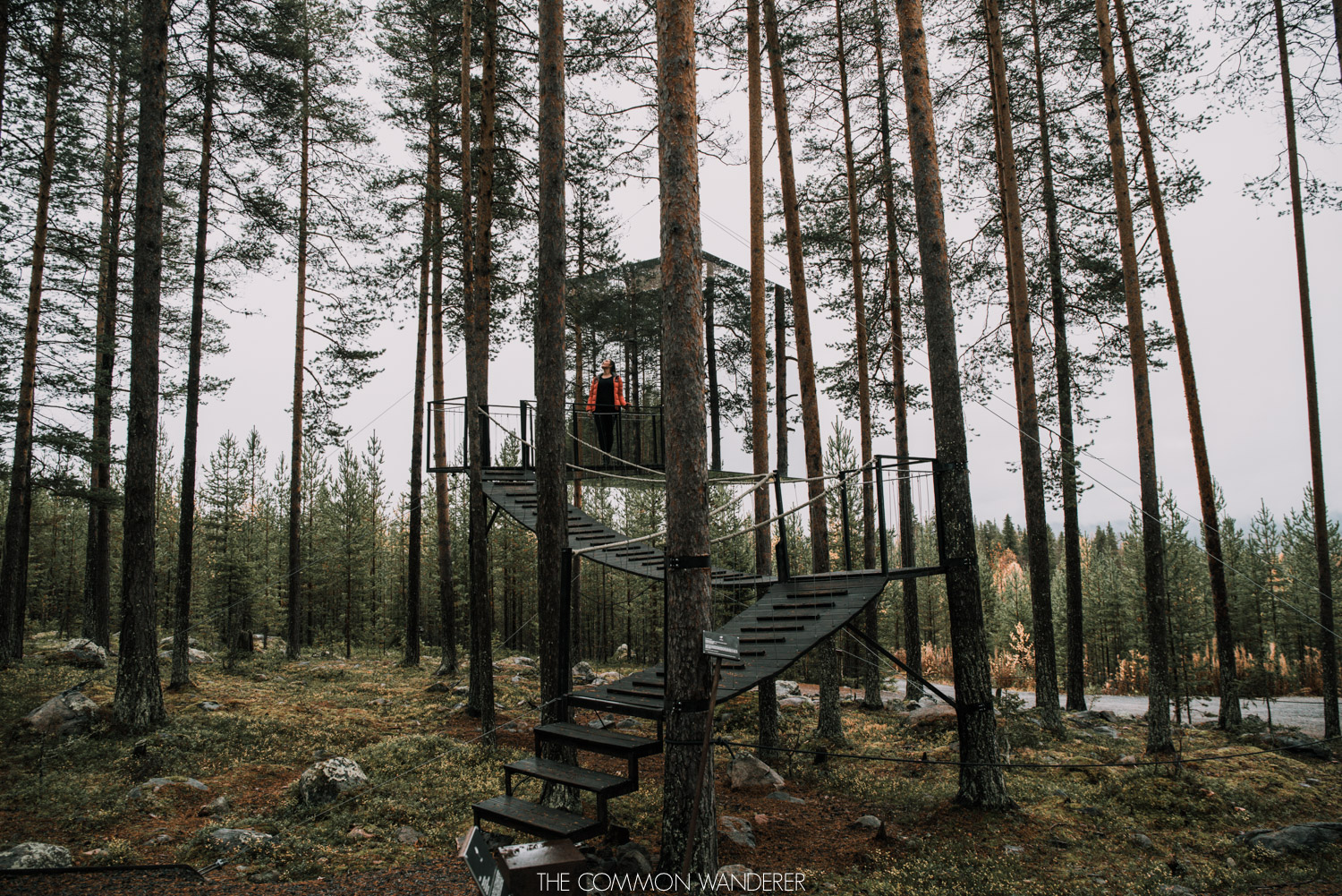 Lapland Pictures: exploring the Treehotel in Harads, Swedish Lapland