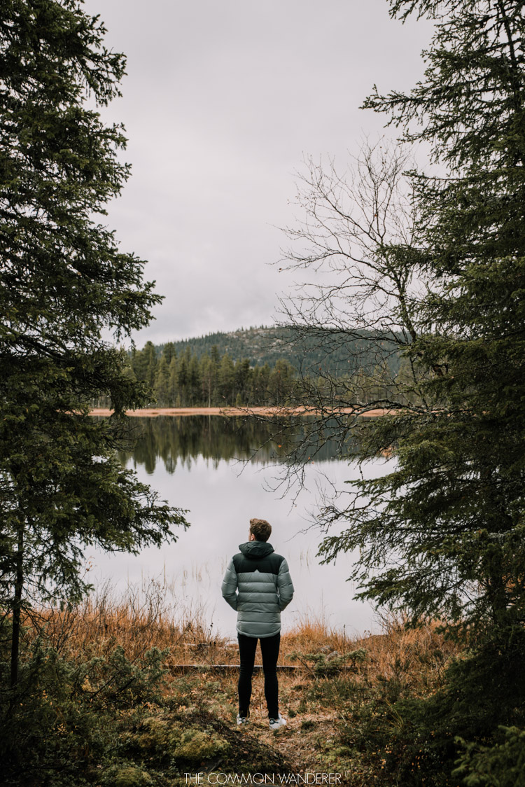 Lapland Pictures: man standing by lake in swedish lapland