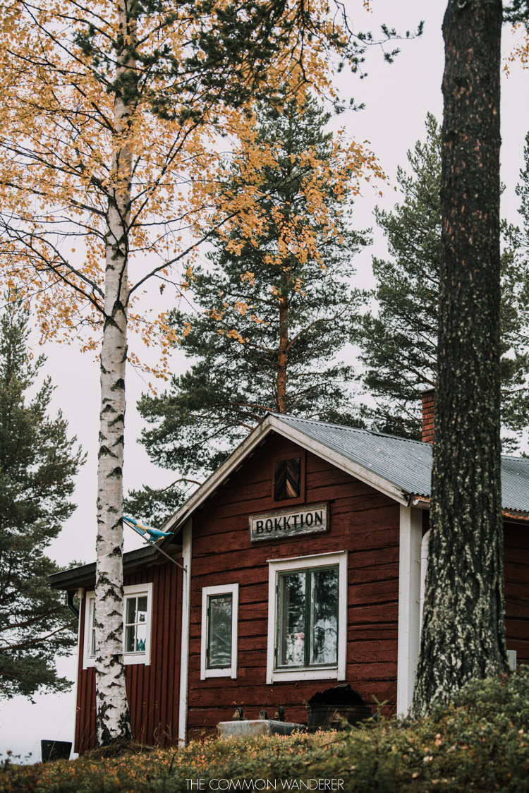 red cabin in sorsele Swedish Lapland