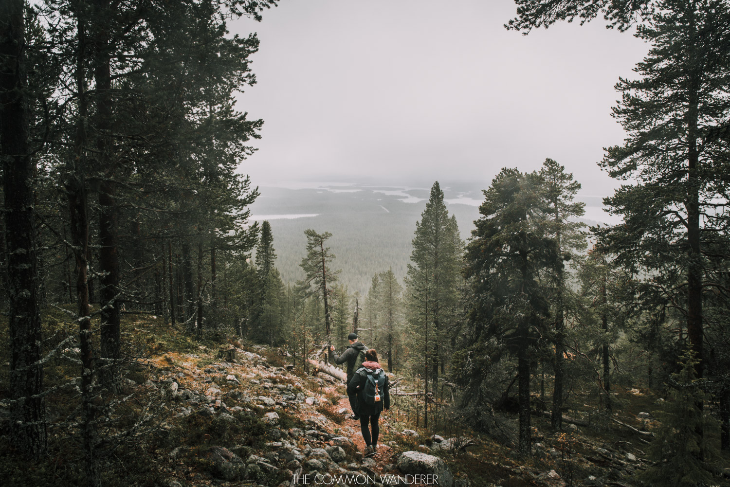 Hiking in the forest outside of Arjeplog, Swedish Lapland