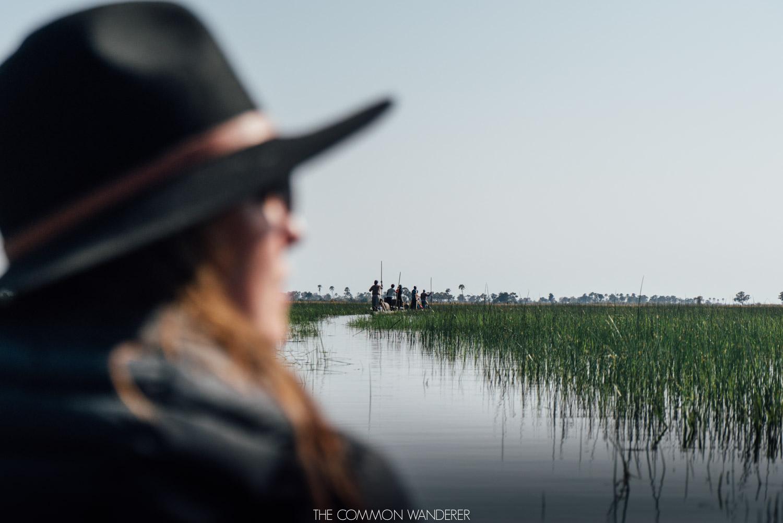 Mokoro ride in the Okavango Delta, Botswana - the Common Wanderer