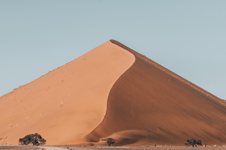 Dune 45 - the tallest dune in Sossusvlei, Namibia - Namibia photos