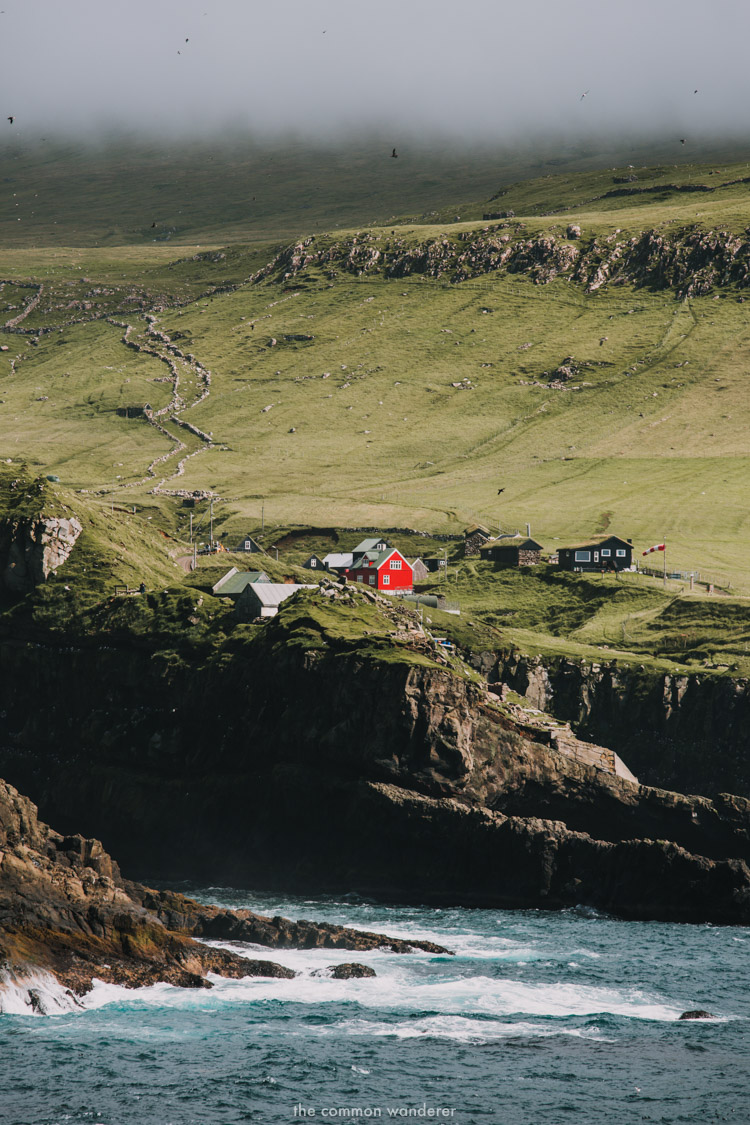 The Common Wanderer_-Faroe Islands 11.jpg
