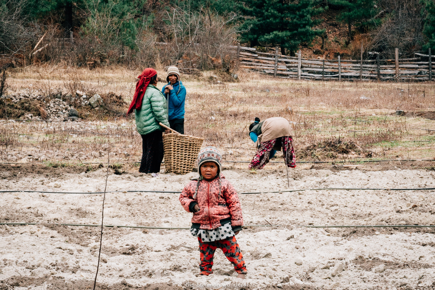 Locals farming on the Annapurna Circuit trek, Nepal