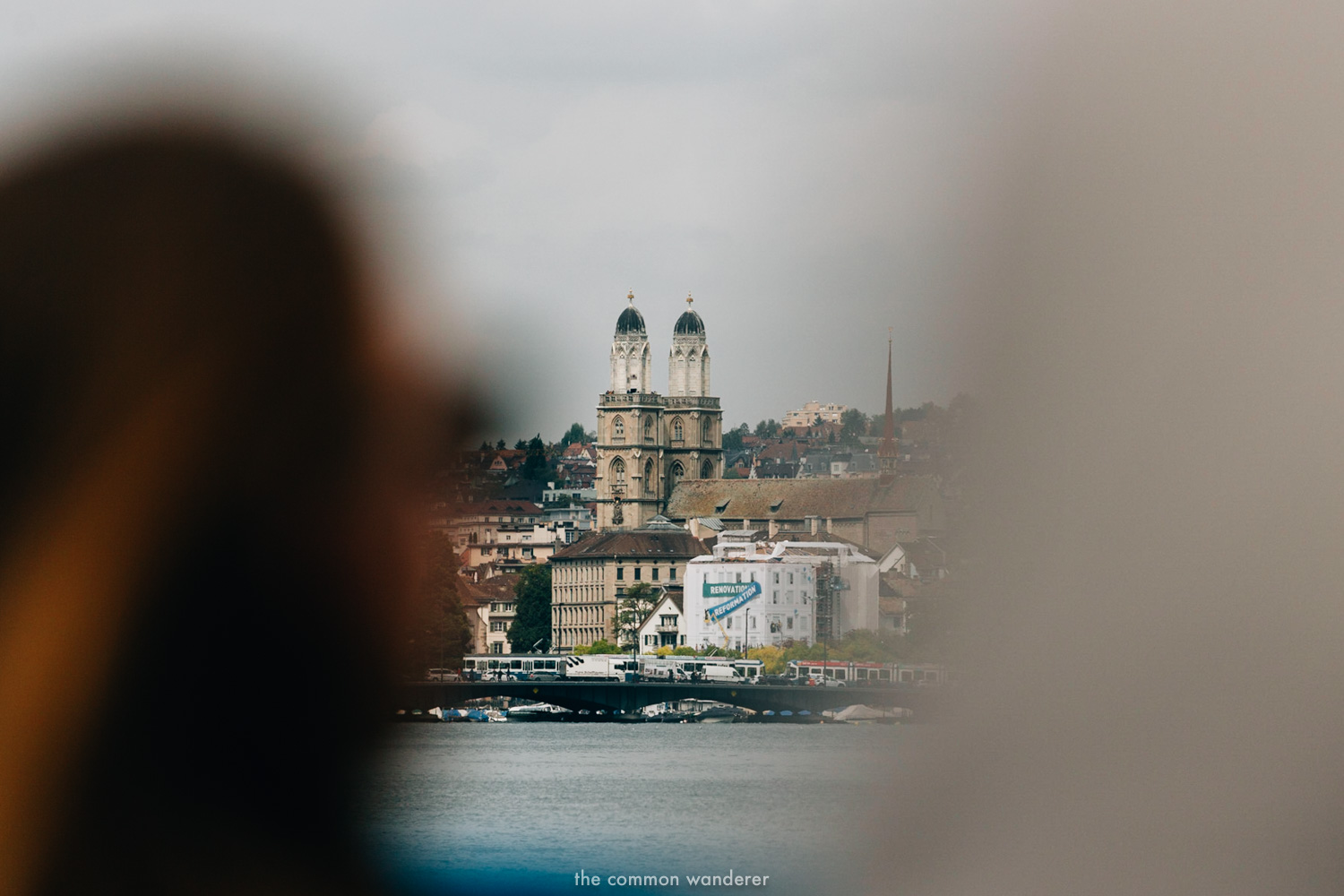 The Common Wanderer_- cruise on lake Zurich.jpg