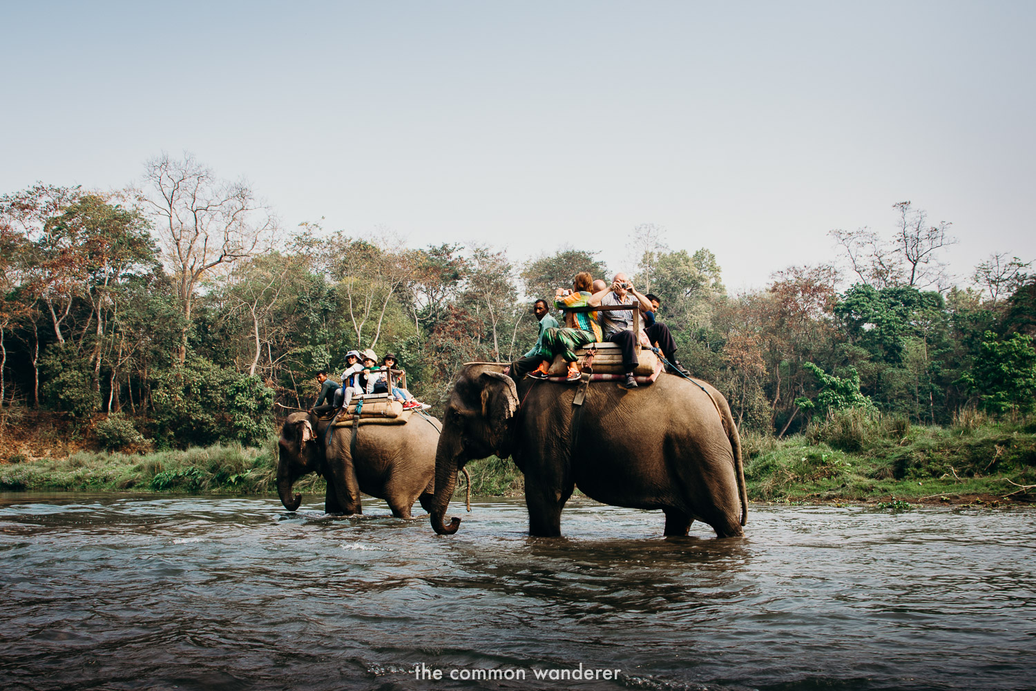 Not riding animals is one of our top responsible travel tips