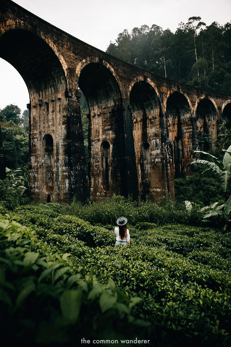 Standing under the nine arches bridge, Ella Sri Lanka