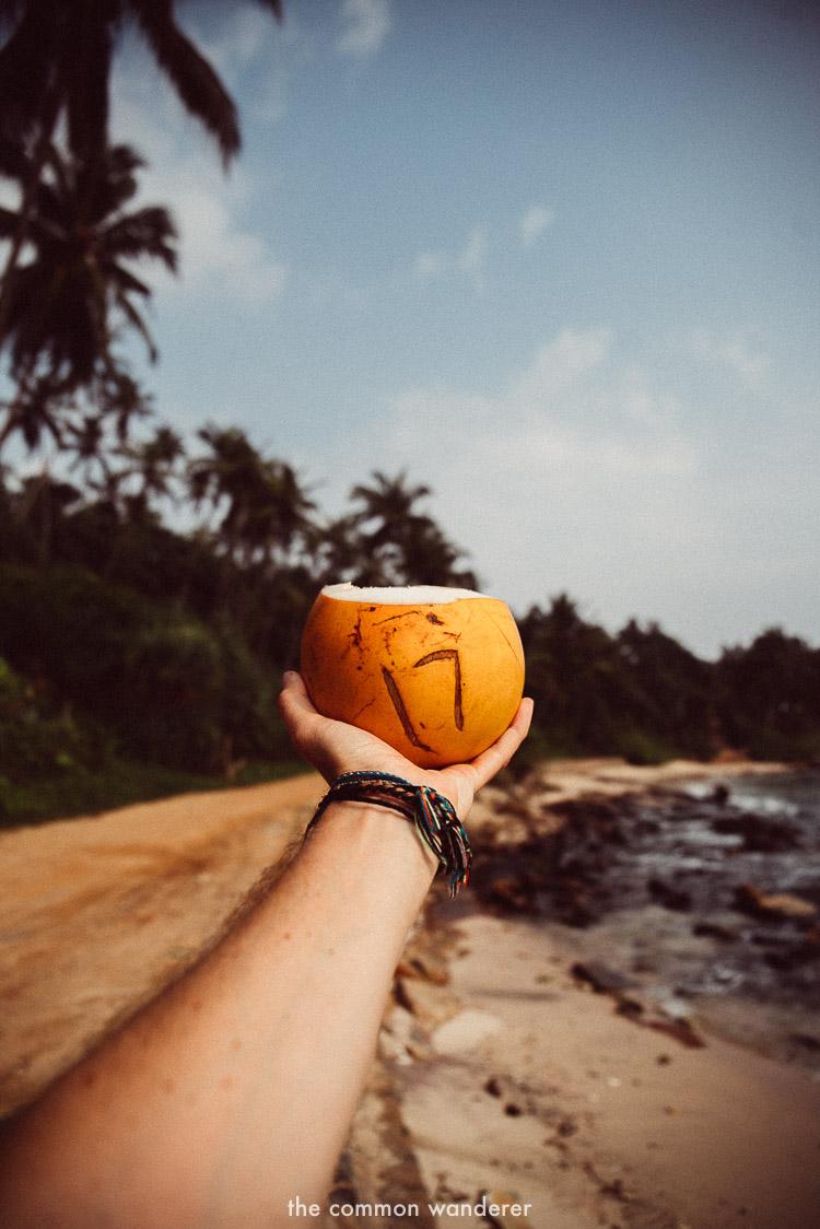 The_Common_Wanderer_The_Common_Wanderer_best_things_to_do_Sri_Lanka-4.jpg