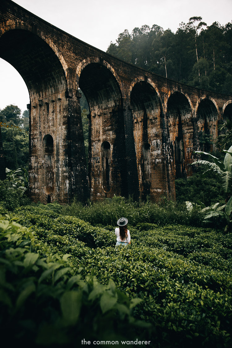 Standing under the nine arches bridge, Ella - best things to do in Ella, Sri Lanka