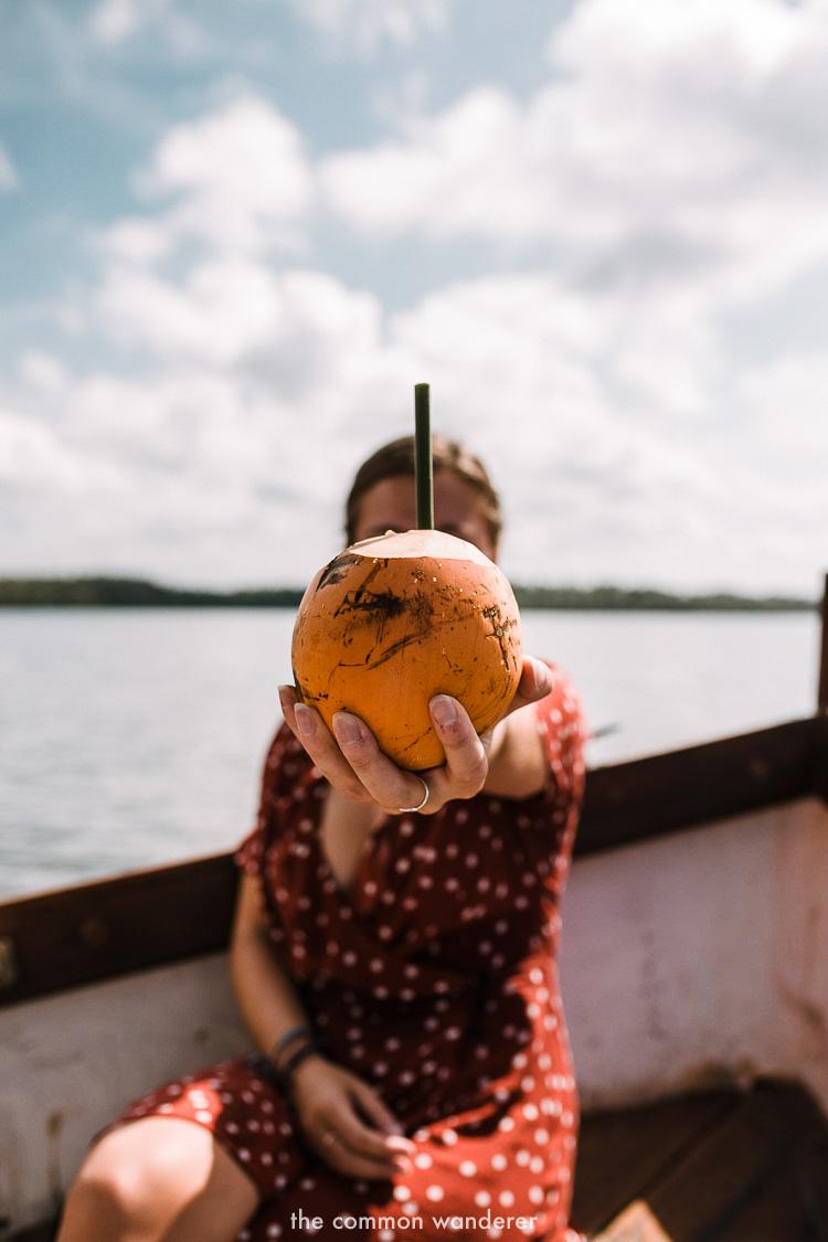 a fresh coconut at Tri Lanka