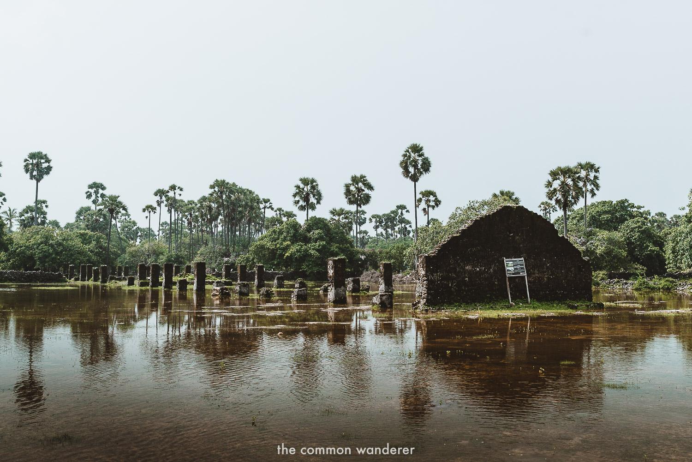 A day trip to Delft Island, Jaffna's curious coastal island