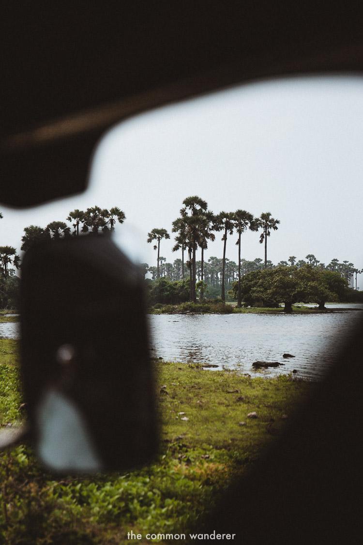 Peeking through the tuk tuk while exploring Delft Island | Delft Island Guide