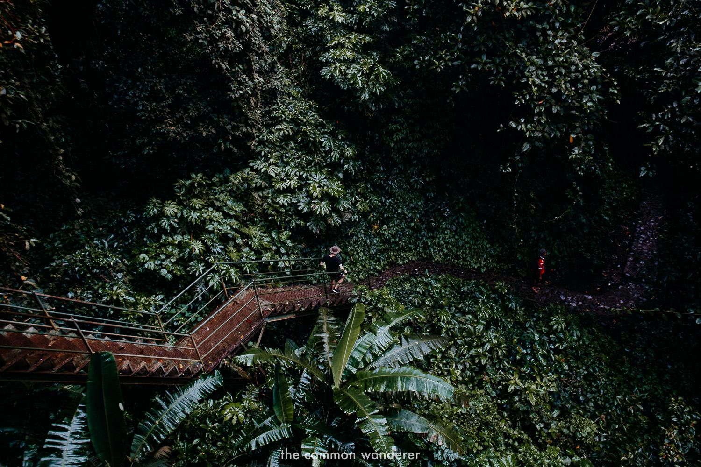 A guide to Sekumpul waterfall, Bali | hiking to the bottom of the waterfall!