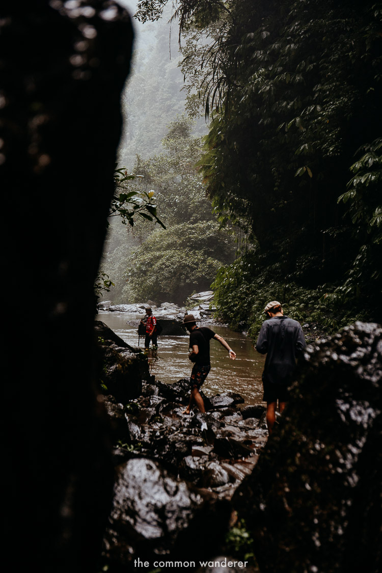 Hiking through Hidden Waterfall, Bali | A guide to Sekumpul waterfall, Bali