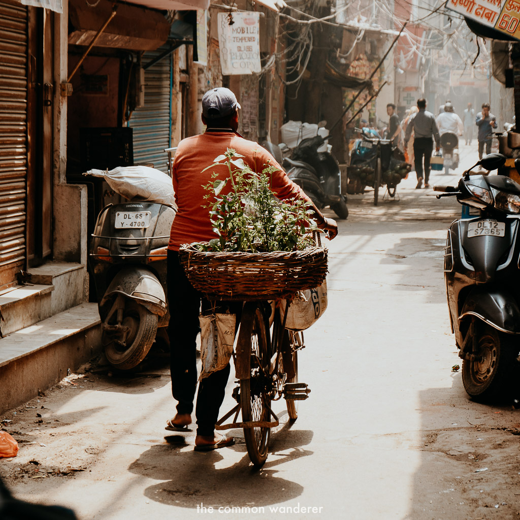 The windy streets of Chandni Chowk in Old Delhi - India three week itinerary