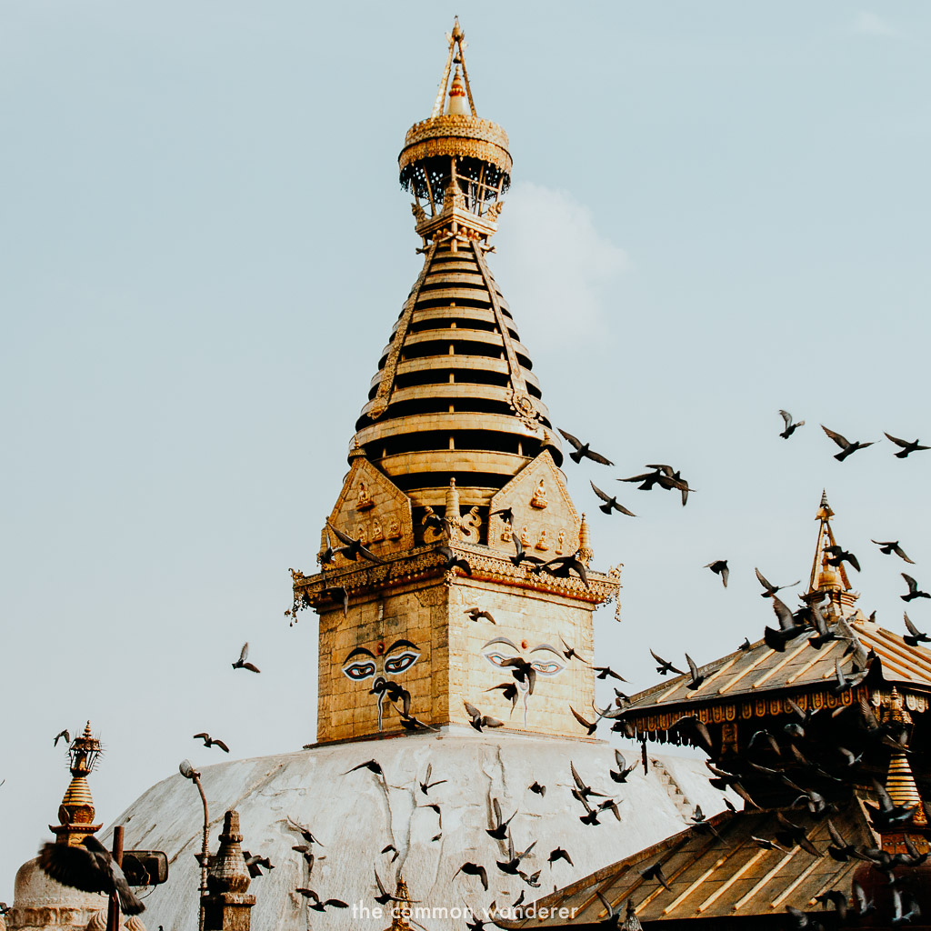best things to do in Nepal is visiting Swayambhunath stupa